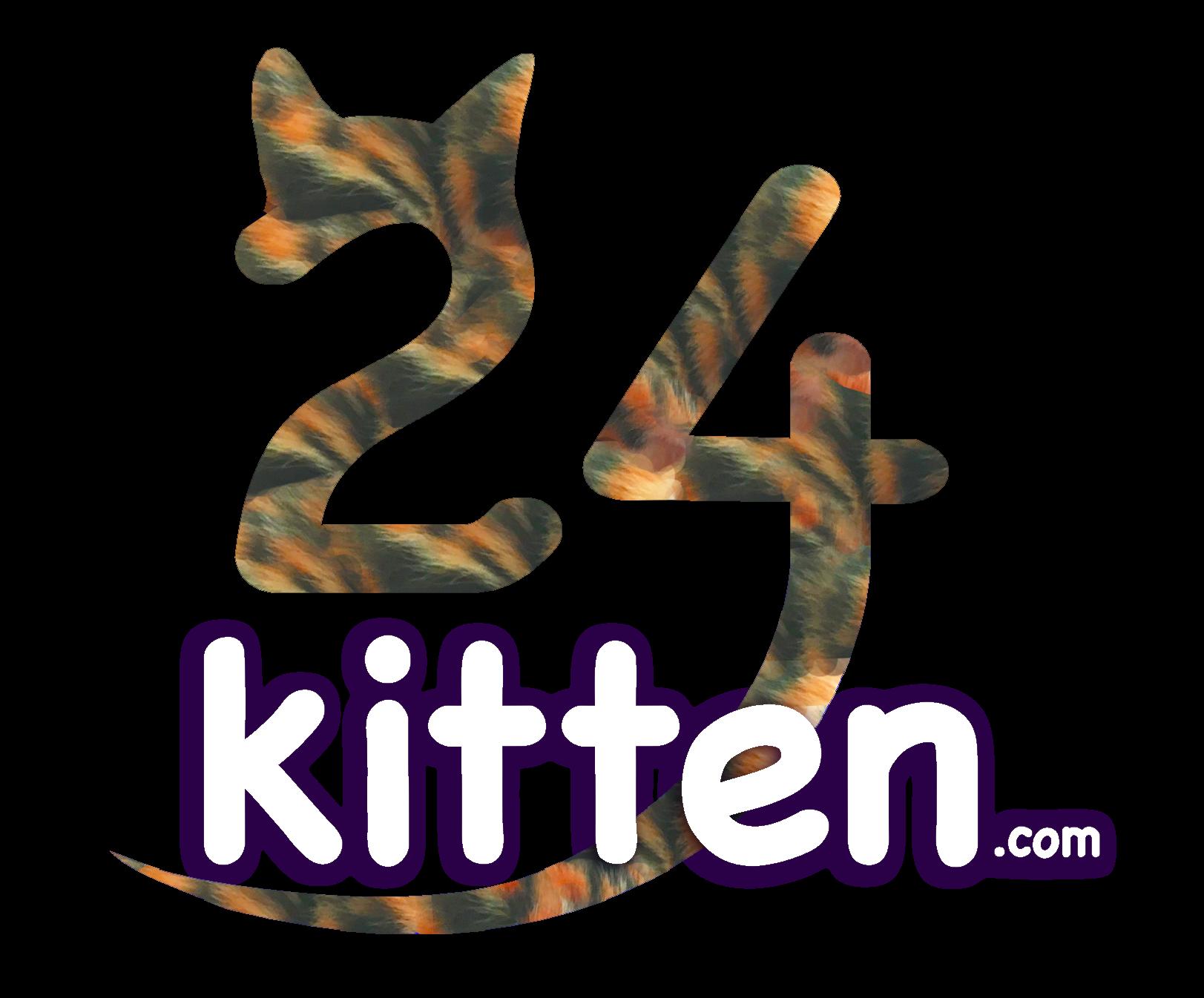 24kitten.com